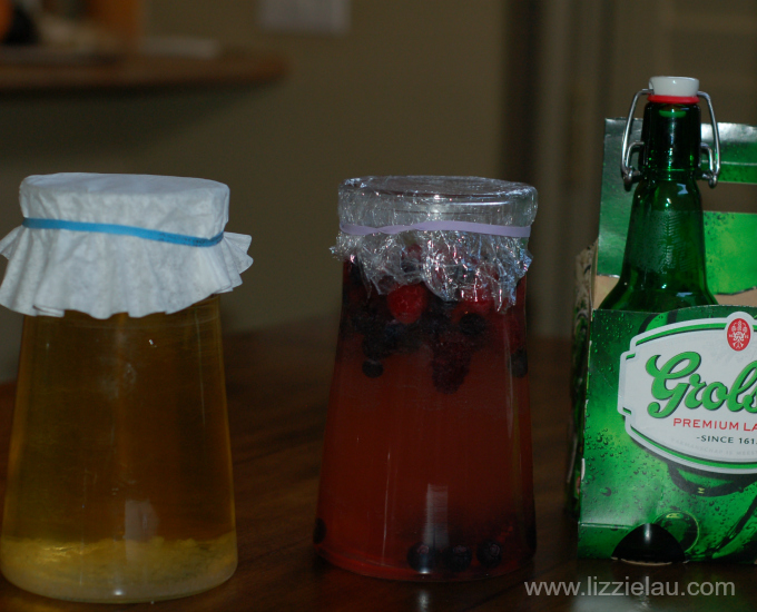 3 stages of water kefir