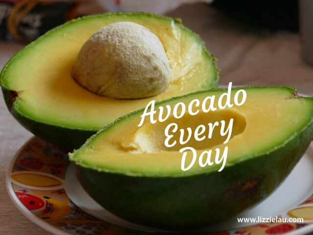 avocado every day
